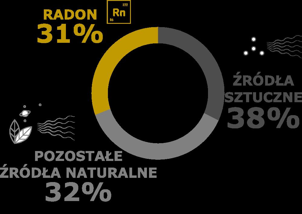 Udział różnych źródeł promieniowania jonizującego w rocznej dawce skutecznej otrzymanej przez statystycznego mieszkańca Polski w 2019 r.
