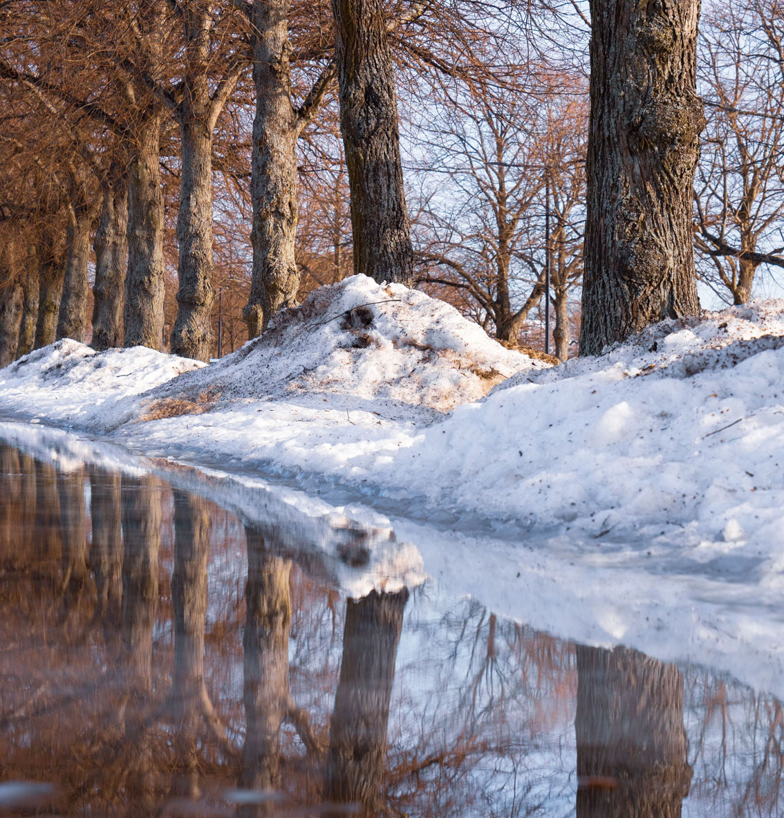 Czy czeka nas najcieplejsza zima w Polsce w XXI wieku?