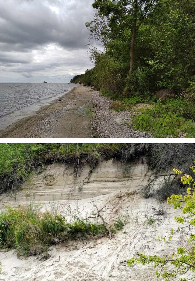 Klif Mecheliński u wybrzeży Zatoki Gdańskiej (10 km na północ od Gdyni). Widok na plażę, klif i zatokę (u góry) oraz ścianę klifu odsłoniętą na skutek abrazji (u dołu); fot. Klaudia Kusek, IMGW-PIB.