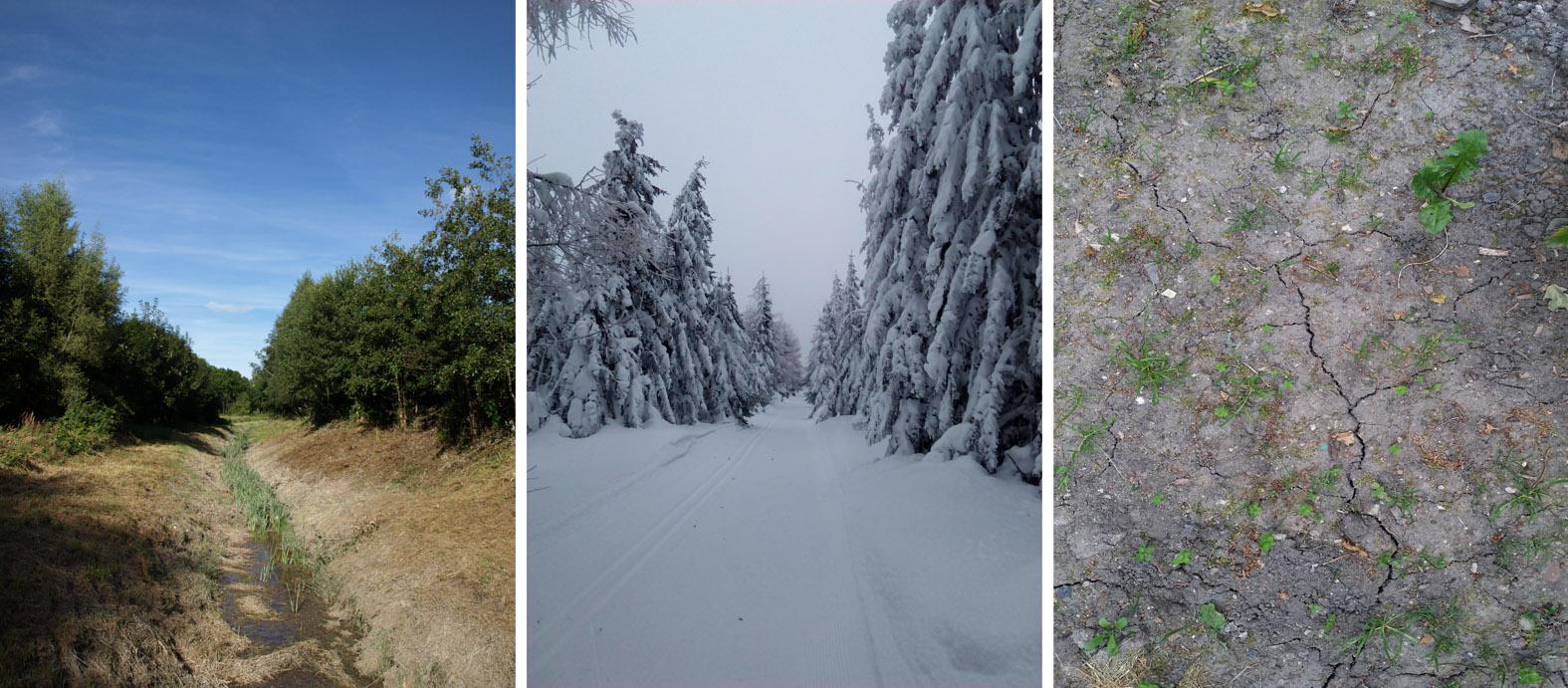 Wzrost temperatury powietrza w regionie może m.in. negatywie wpłynąć na bioróżnorodność, a także przyczynić się do intensyfikacji susz oraz pogorszenia warunków śnieżnych dla narciarstwa (fot. I. Lejcuś, B. Miszuk)