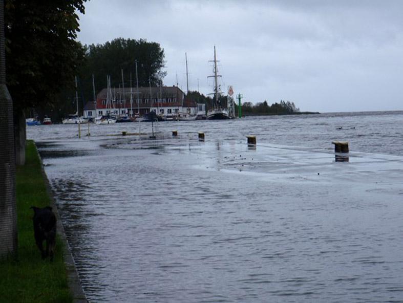 15.10.2009 r., widok na Port Żeglarski w Trzebieży.
