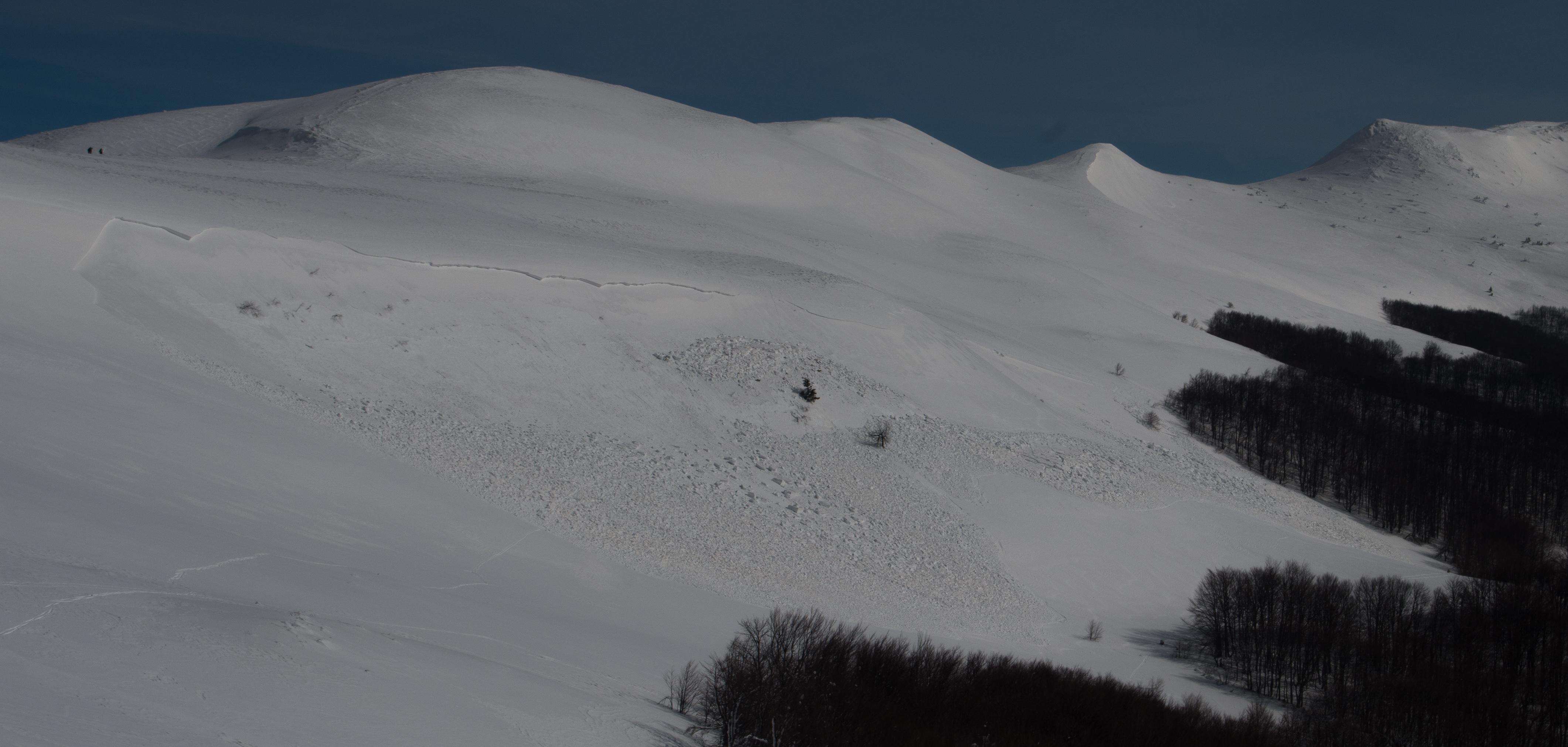 Charakterystyczna dla Bieszczad lawina o szerokim, ponad 400 m, obrywie; Szeroki Wierch, Bieszczady.
