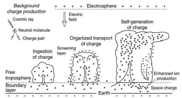 Konwekcyjny mechanizm elektryzacji chmury Cumulonimbus (źródło: Lamb D., 2011, Physics and Chemistry of Clouds, Cambridge University Press).