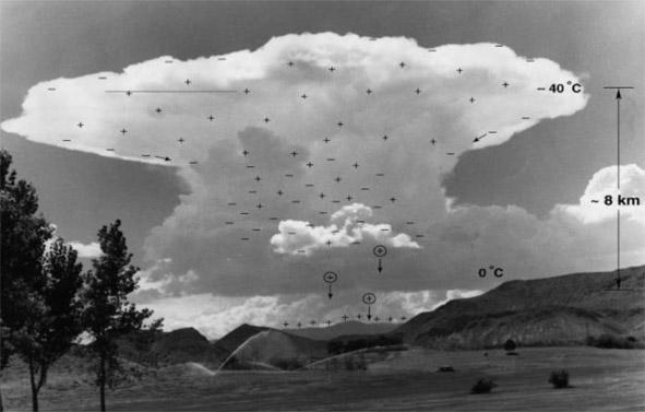 Struktura elektryczna chmury Cumulonimbus (źródło: Rakov V.A., Uman M.A., 2003,, Lightning Physics and Effects, Cambridge University Press).